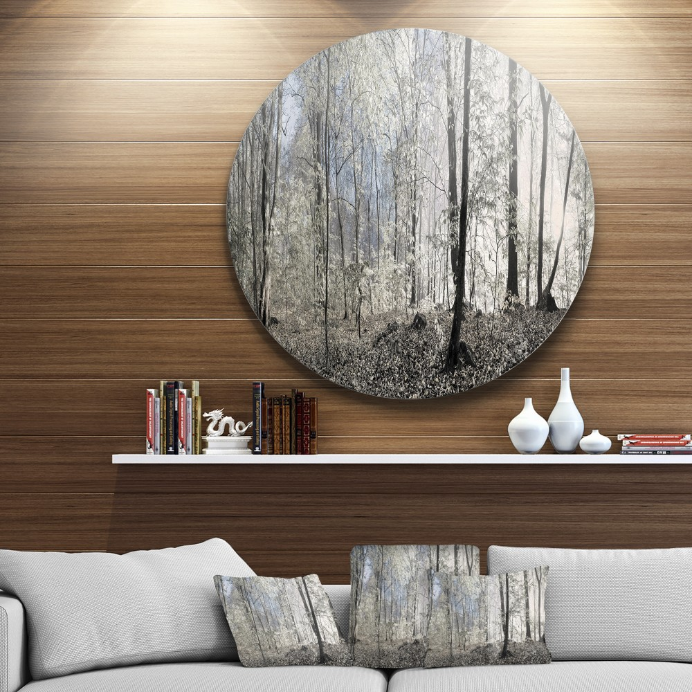 Dark Morning In Forest Panorama Landscape Round Circle Metal Wall Art Round Wall Art