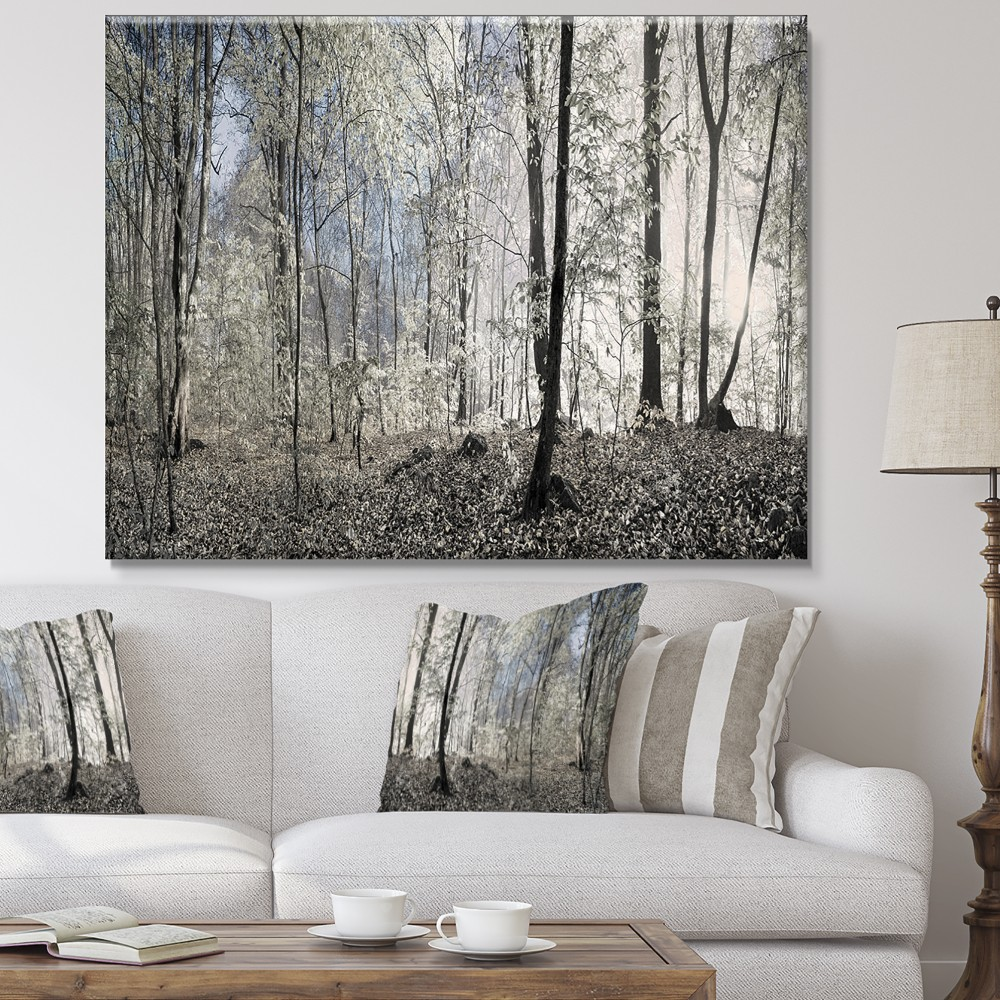 Designart Dark Morning In Forest Panorama Landscape Canvas Art Print